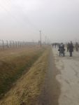 Walking through the huge space of Auschwitz-Birkenau